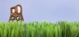 Easter-bunny-hiding_for-blog